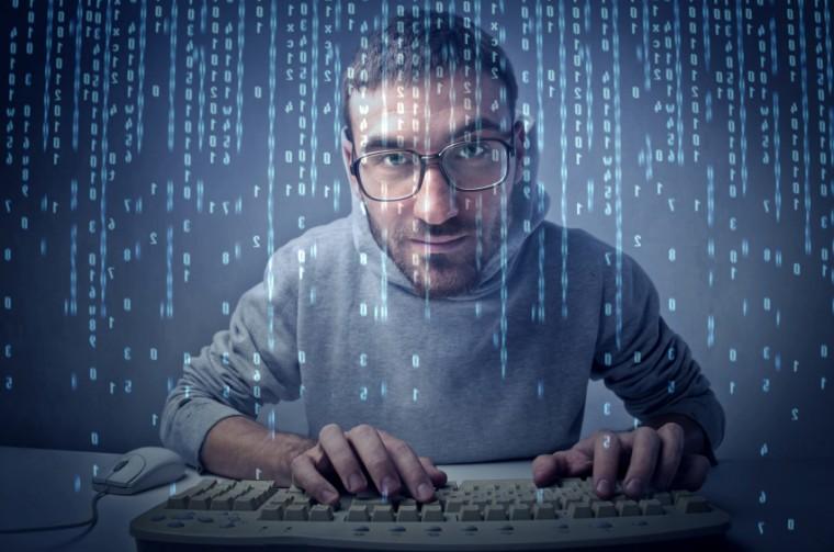 freelance-wordpress-developer