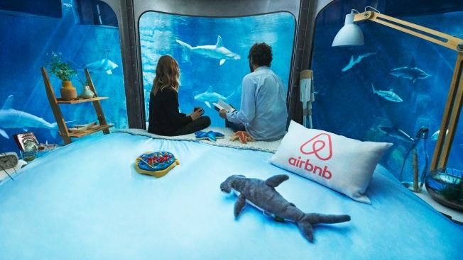airbnb-aquarium-hed-2016