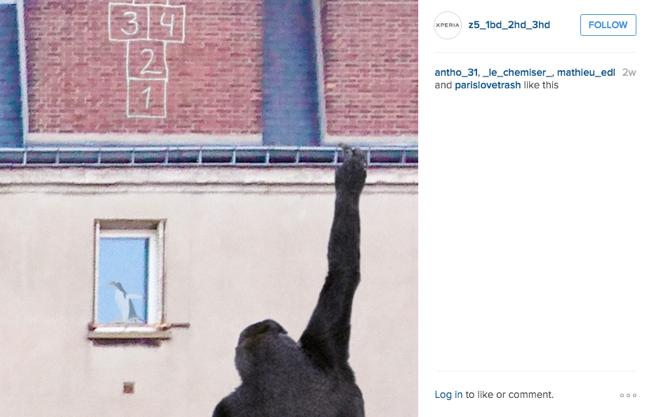 instagram_sony_3