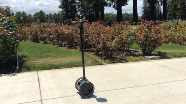 360-garden