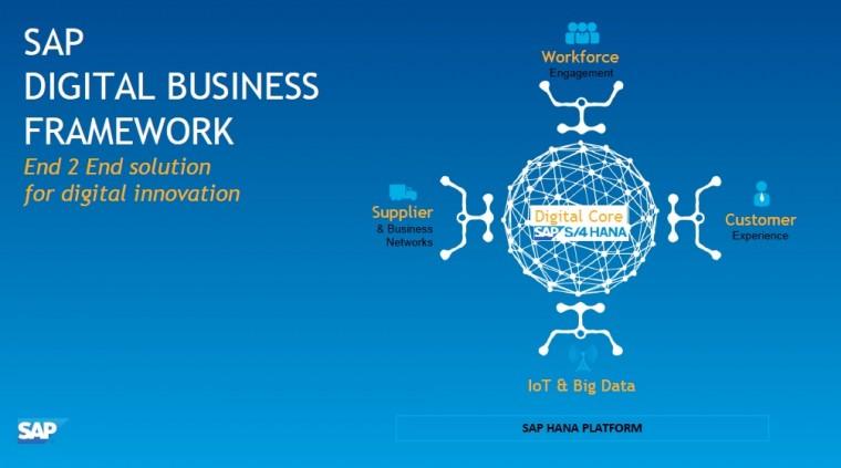 SAP report 2